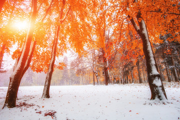 first days of winter