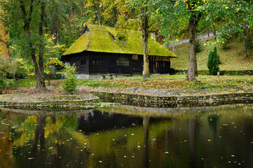 wooden house with moss on roof