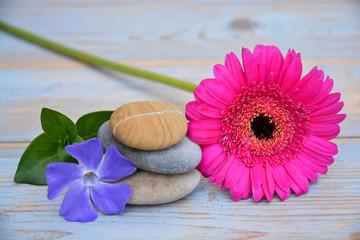 Drie Zen stenen op oud hout met bloemen