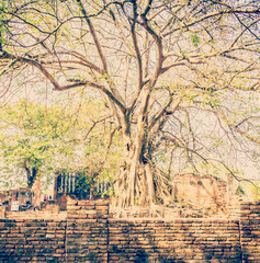 Old temple in ayutthaya Thailand