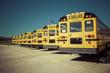 Yellow School Bus - 72170805