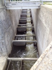 a fish ladder built into a dam to allow fish migration
