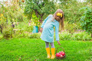 Little girl with basket of apples in sunny autumn day