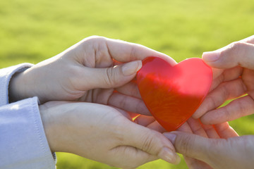Hands of women to pass the thing of red heart-shaped