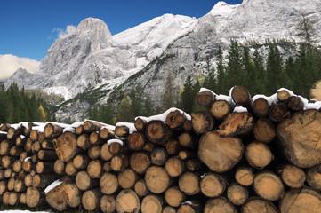 Catasta ai piedi delle Dolomiti