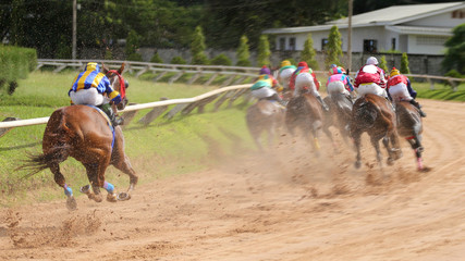 A racehorse and jockey in a horse race