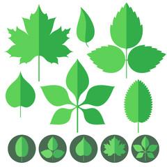Leaf. Icon Set