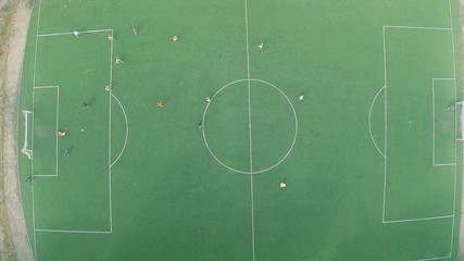 Team playing professional soccer (football) on pitch, training