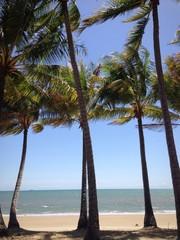 Exotic Australian beach