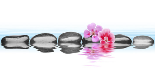stones with flower isolated white background