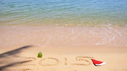 Happy New Year 2015 in Santa Hat on Sandy Beach with Wave