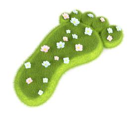 Grassy footprint