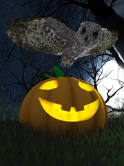 Halloween pumpkin and owl in night forest