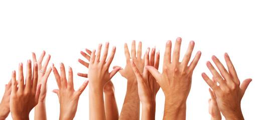 several raising human hands