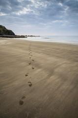 Footprints on beach Summer sunset landscape