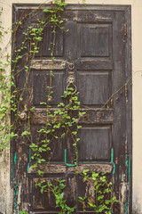 The old vintage door