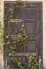 The old vintage door