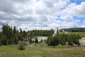 Yellowstone Landschaft