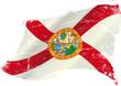 Florida grunge flag
