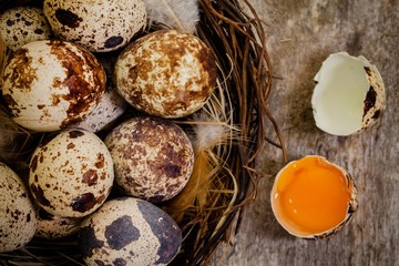 quail eggs in a nest on a dark wooden background