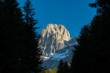 Pale of San Martino mount framed by tress, blue sky, Dolomites