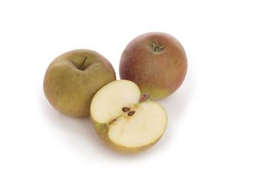 Boskoop, alte  Apfelsorte aus den Niederlanden