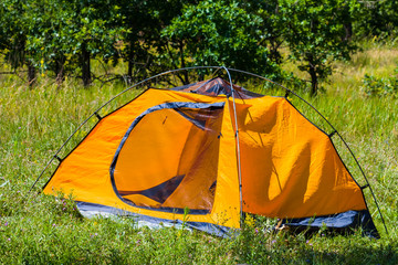 orange tent on a forest glade