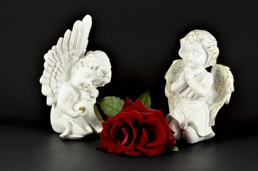 Ornamental angels with red rose for gifts, isolated on black