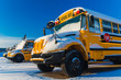 Winter School Bus - 72216847