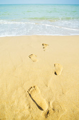 Footprints trail in wet sand