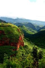 A View in Kauai