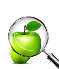 reviewing an green apple with a magnifying glass
