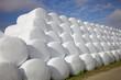 Leinwanddruck Bild - Freiluftlager - Ballen von Silage