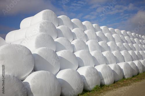 Leinwanddruck Bild Freiluftlager - Ballen von Silage