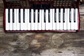 Keyboard of accordian