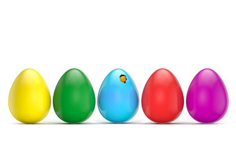 colorful eggs tweet bird