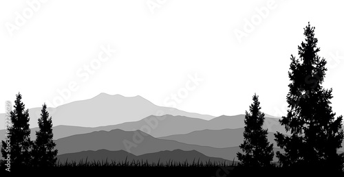 coniferous forests for you design poster