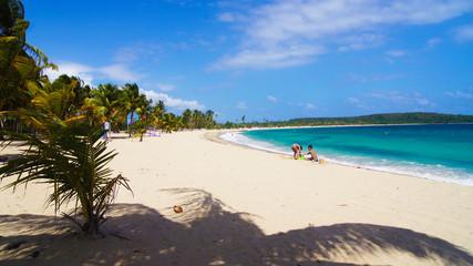Playa de Sun Bay. Vieques. Puerto Rico.