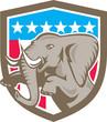 Elephant Prancing Stars Shield Retro