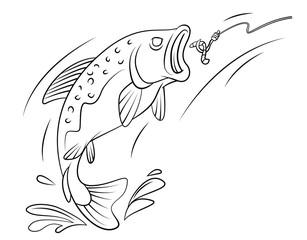 Fishing Trout Fish