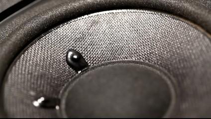 A Close up of an AudioWoofer