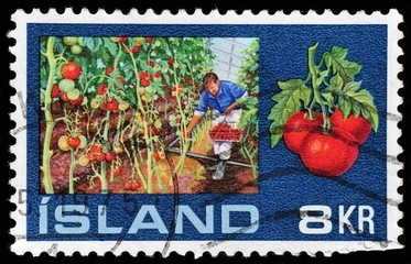 Iceland stamp