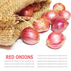 Red onions isolated in burlap isolated on white background