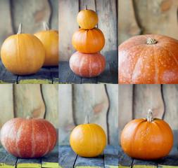 Collage of autumn pumpkins.