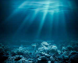 Sea deep or ocean underwater with coral reef as a background for
