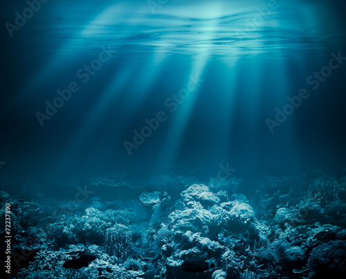 Foto op Aluminium Onder water Sea deep or ocean underwater with coral reef as a background for