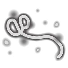 エボラ ウイルス 出血熱