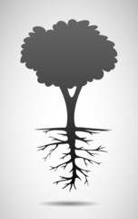 Tree and root illustration
