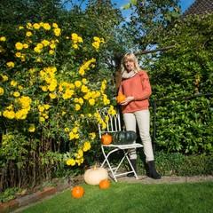 Herbstgarten, Frau, Kürbisse