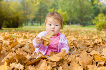 baby playing with autumn leaves